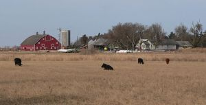 800px-Nelson_Farm_(Merrick_County,_Nebraska)_from_SE_1