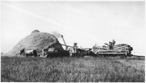 Threshing_crew_at_work_-_NARA_-_285319