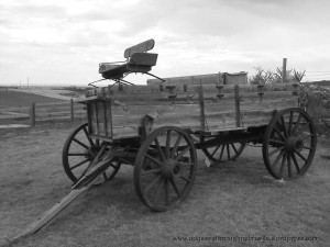 B & W wagon ride