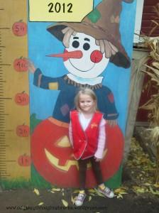 Pumpkin Patch height chart