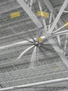 SAS fan propellers