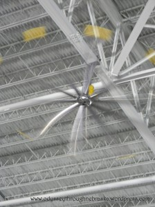 SAS fan propellers