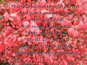 Every bush afire with God