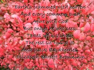Every bush afire with God