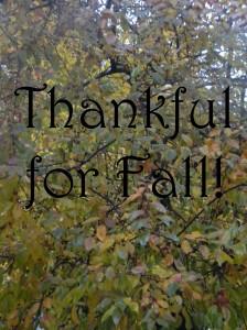 Fall Thankful