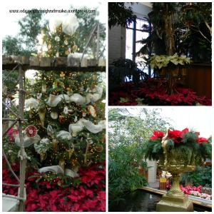 Lauritzen Gardens floral displays