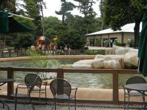 Omaha Zoo Sea Lion Pool